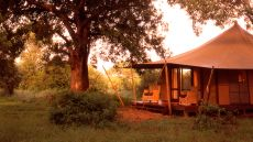 Ngala Tented Camp  Limpopo, South Africa
